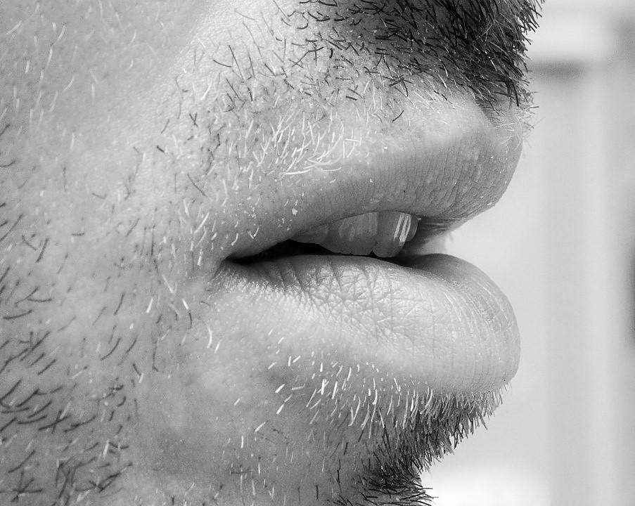 Lip Motion Passwords
